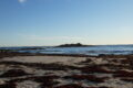 Steninge strand